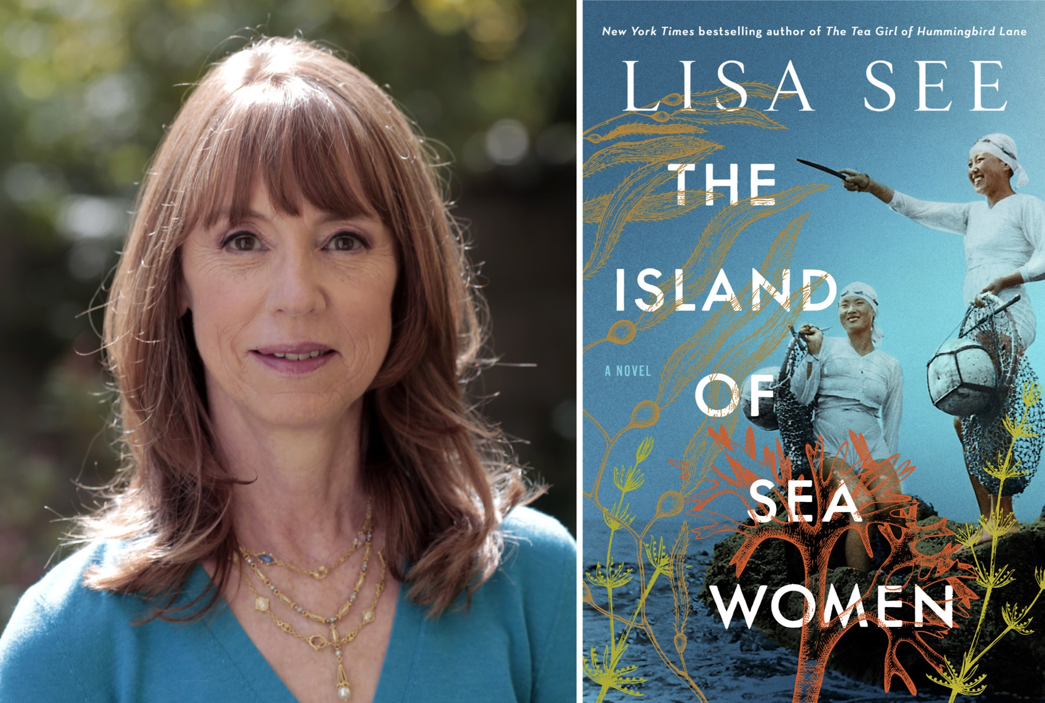 lisa see island of sea women bookshop santa cruz